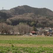 日和田山と巾着田