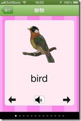 英語絵辞典フラッシュカード